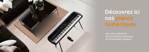 Pianos Numeriques 2.jpg